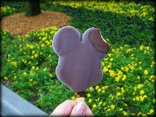12 Things to Try at Disney World